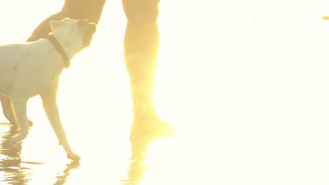 Bare feet beach walk Footage