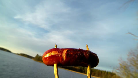 Wooden stick with a sausage being set for grilling over a campfire with smoking  Footage