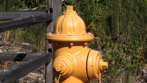 Yellow Fire Hydrant Stock Video Footage