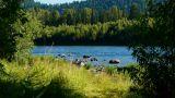 Teletskoe lake 8, Altai, Russia Footage