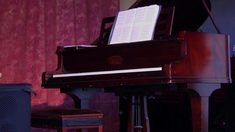 Schiedmayer Piano Live Action