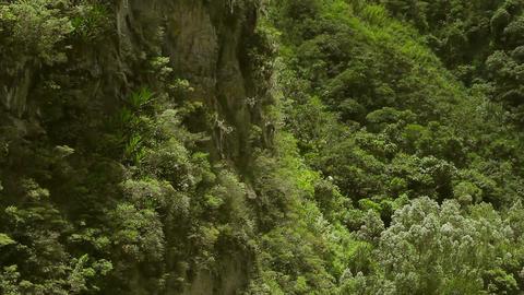 Chamana Waterfall Pan Footage