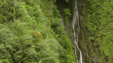Hidden Waterfall Footage
