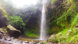 Hola Vida waterfall slide tree HD Footage