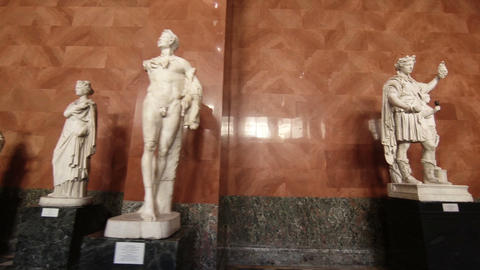 Sculptures And Statues In The Hermitage Of St. Petersburg stock footage