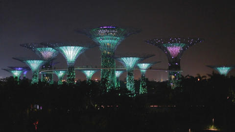 singapore supertree grove show - green lights Footage