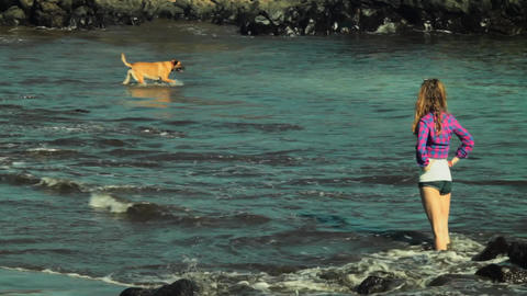 female and dog play at the seashore Live Action