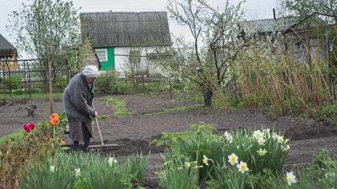 The gardener 10 Footage