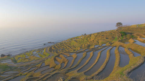 A Thousand Rice Paddies in Shiroyone,Noto Peninsula,Ishikawa.Filmed in 4K Footage