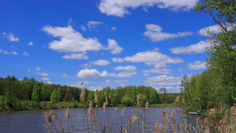 timelapse with clouds, blue sky, lake and forest Footage