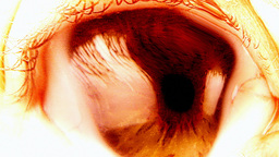 Eye nightmare bloody blow Footage