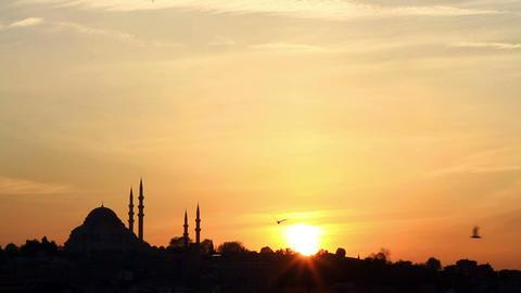 Istanbul Skyline With Suleymaniye Mosque stock footage