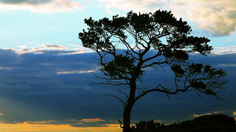 Evening Sky With Rock And Tree stock footage