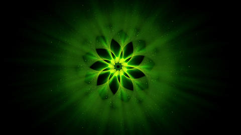 Green Ornamental Round Pattern, Mandala Animation, Festive Background Animation
