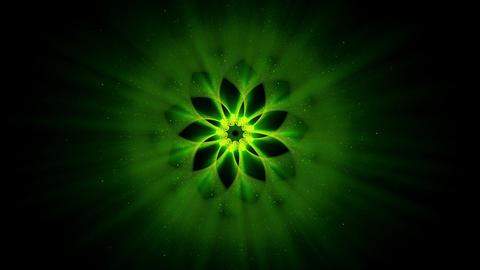 Green Ornamental Round Pattern, Mandala Animation, Festive Background Animation