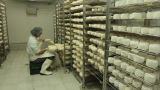 Blue Cheese Gouda Factory Food Process Parmesan Swiss Dairy Feta France Milk stock footage