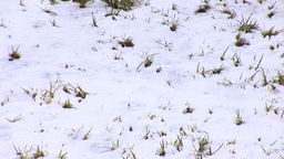 Jerusalem snow 2012 12 Stock Video Footage