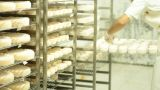 Wine Blue Cheese Gouda Bread Grape Food Parmesan S stock footage