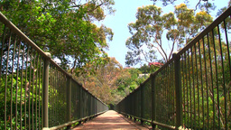 Australia Bridge Stock Video Footage