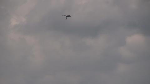 Eurofighter Typhoon Stock Video Footage