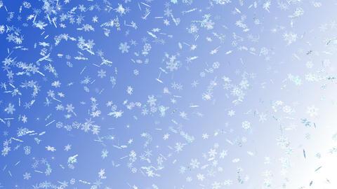 Snow Flake falling A 4k Animation