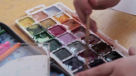 Paint-box, watercolor paints palette, brush Footage