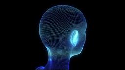 Female Head Hologram Wireframe Animation