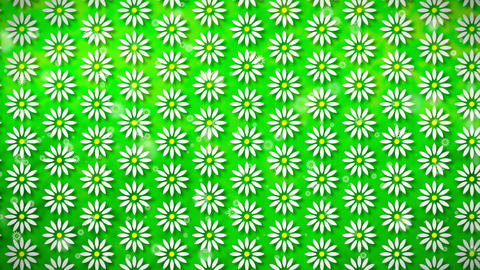 Wallpaper Flower, Loopable Motion Background, soft motion…, Stock Animation