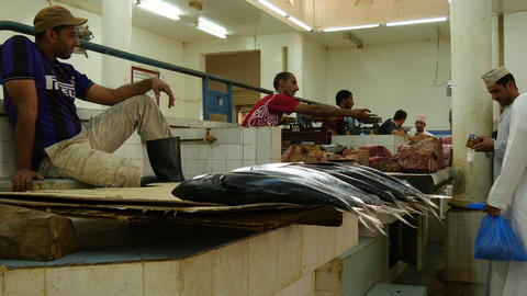 fishermen selling fresh caught fish Live Action