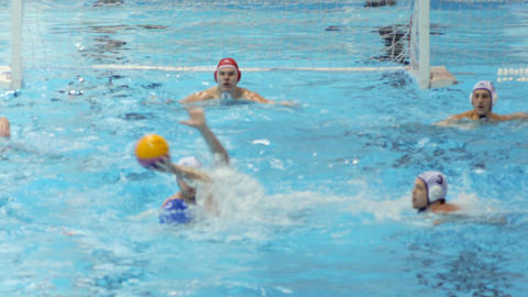Water Polo Action 6 Live Action
