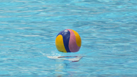Water Polo Start Live Action
