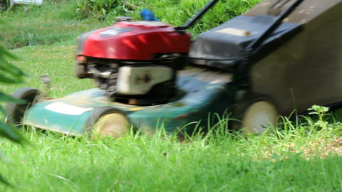 Mowing The Lawn.Man Mowing The Grass With Motor Grass Cutter stock footage