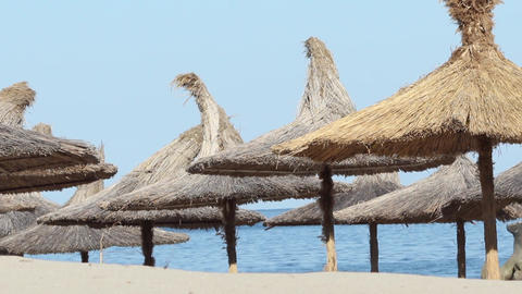 Thatched Umbrellas on Beach Footage