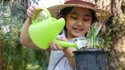 4K Video Of A Happy Asian Girl Watering Her Plant In The Garden stock footage