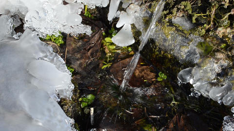 clear water stream flowing into the icy grass in winter day Footage