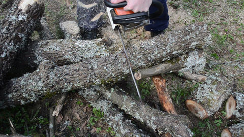 part of tree branch fall cut by man with chainsaw Footage