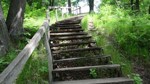 climb upstair wooden old stairs railing surround green flora Stock Video Footage