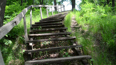 climb upstair wooden old stairs railing surround green flora, Live Action
