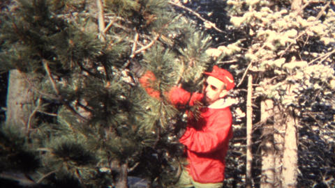 (8mm Vintage) 1965 Xmas Tree Chop Your Own Montage Footage