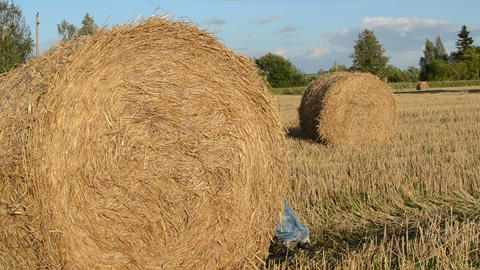 Man Move Push Straw Bales Roll Field Tractor Trailer Road stock footage