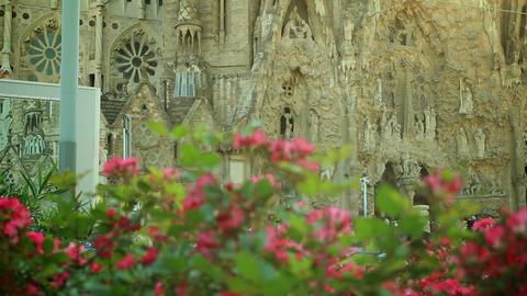 Sagrada Familia and flowers in Barcelona, Spain Acción en vivo