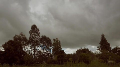 Timelapse with thick clouds over various trees and a meadow, dramatic scenery Footage
