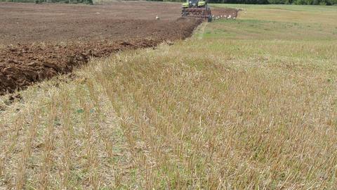 heavy machinery tractor plow field stork birds in distance Footage