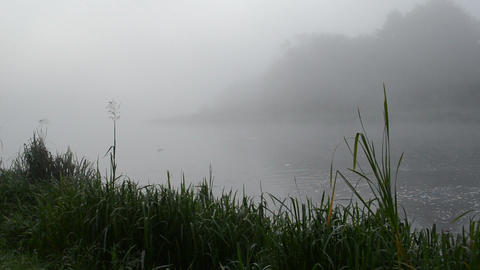 dense fog rise flowing river water early morning Footage