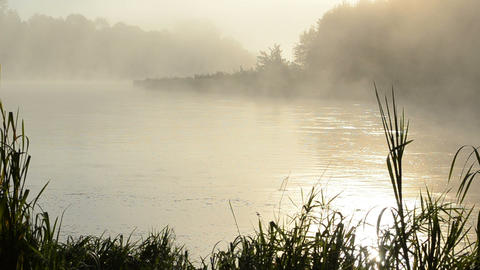 morning sunrise reflection misty fog rise flow river water Footage