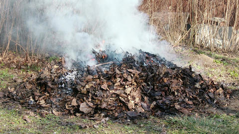 4K Burning Leaves and Garden Waste in Late Autumn 1 Animation