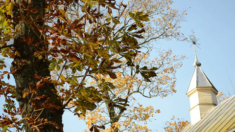 Old Rural Wooden Church Tower Cross Autumn Conker Tree Leaves stock footage
