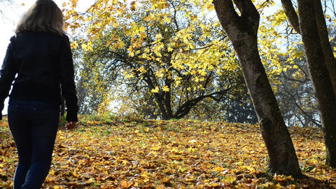 young blond woman walk park golden leaf fall autumn tree branch Footage