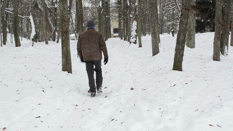 Man Walk Winter Park Lime Tree Alley Path Covered Snow stock footage