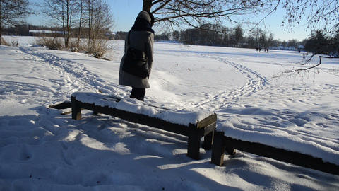woman coat sit bench snow admire frozen lake stand walk people Footage
